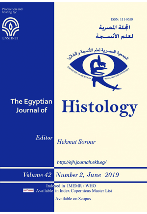 Egyptian Journal of Histology